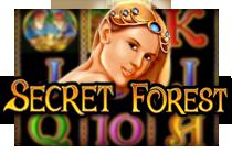 Secret Fores